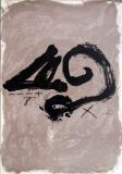 Antoni Tàpies: Bilder und Objekte 1948-1978